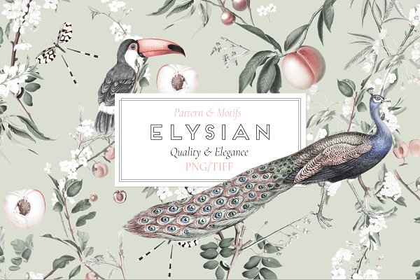 Patterns: TSTUDIO - ELYSIAN, Quality Prints & More!