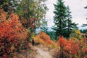 Little Girl Hiking on Mountain Fall
