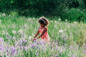 Young Girl Flower Field Harvest