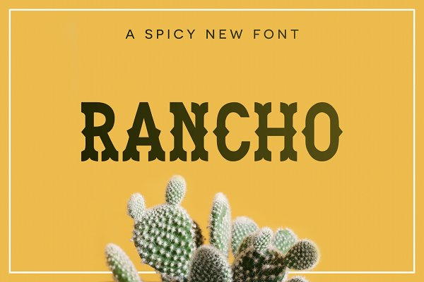 Display Fonts: Flycatcher Design - Rancho Font