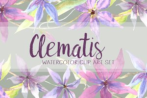 Watercolor Clematis Clip Art Set