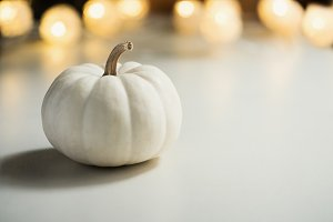 White pumpkin. Thanksgiving