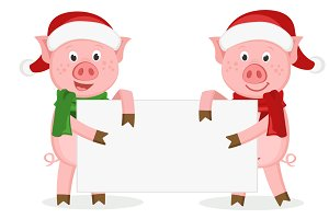 Two pigs dressed in Christmas