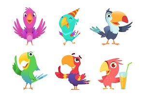 Cartoon parrots characters. Cute