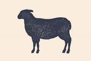 Lamb, sheep. Vintage logo, retro