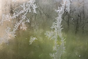Frost on the window