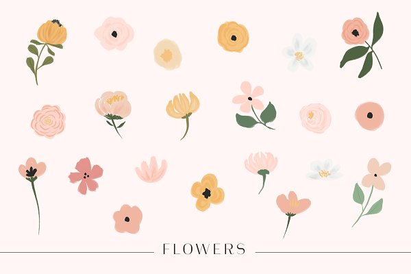 Illustrations and Illustration Products - Ava Floral - Botanical Set