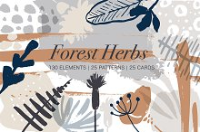 Forest herbs. Big graphic set. by  in Illustrations