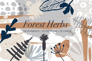Forest herbs. Big graphic set.