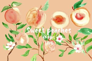 Peach. Watercolor clip art.