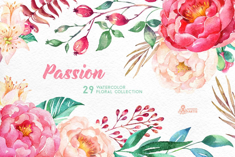 Passion. Flowers Collection ~ Illustrations ~ Creative Market