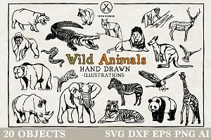 Wild Animals Illustration Pack