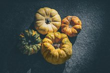 Miniature  pumpkins. Eco vegetables by  in Photos