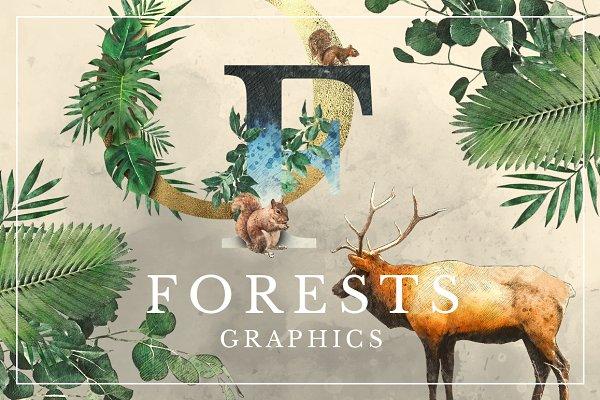 Forest Graphics Designer Kit