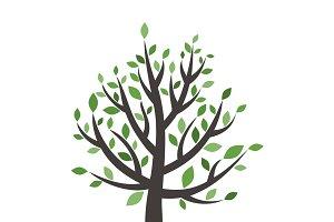 Tree wood6