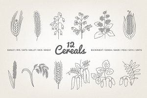 12 Cereals - illustration & patterns