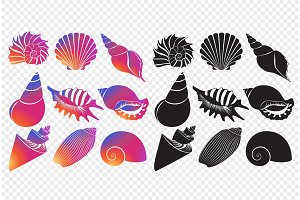 Sea shells silhouettes set