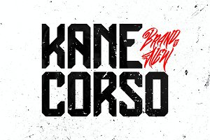 Kane Corso | off 78% before update
