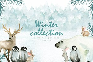 Winter collection. Watercolor