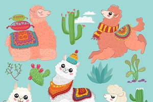 Cute alpaca lama collection.