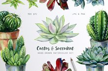 Cactus and Succulent set