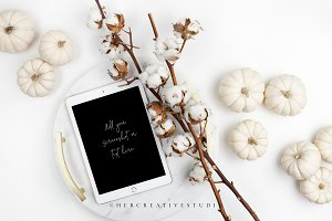White Pumpkins, Cotton & iPad Mockup