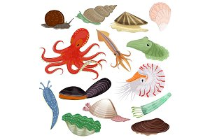Shellfish vector marine animal