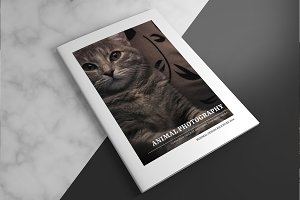 Animal Photography Brochure V827