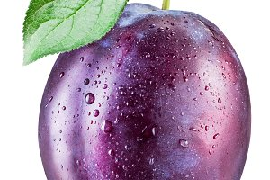 Plum with water drops. File contains