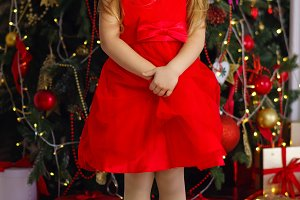Little girl celebrates Christmas