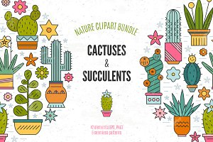 Succulent Clipart & Patterns Bundle