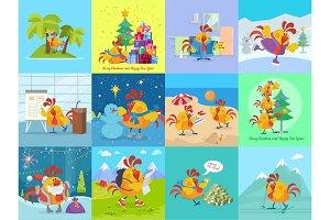 Rooster Bird Adventures Set