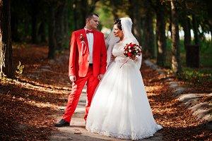 Amazing wedding couple walking, havi