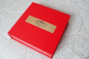 Sohisticated red leather wedding pho