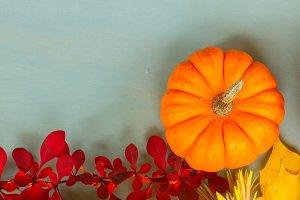pumpkins on blue table