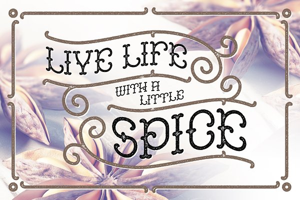 Best Anise Seeds typeface Vector