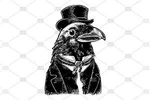 Raven gentlemen suit