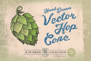 Hand Drawn Vector Hop Cone