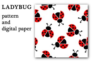 Ladybug - pattern and digital paper