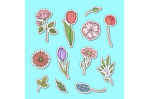 Vector hand drawn flowers stickers