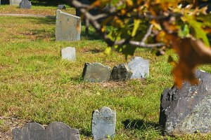 Fall Leaves & Gravestones