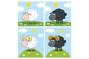 Sheep Character Collection - 2