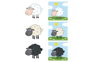 Sheep Character Collection - 3