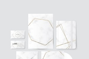 Gold and marble design vector