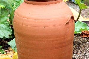Terracotta pot rhubarb forcer