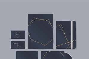 Navy and gold deign products vector