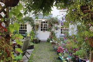 Front Garden Front Door of Cottage