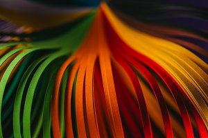 close up of green, orange and red qu