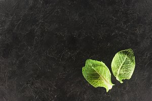 top view of green leaves of fresh he