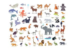 Big Set of World Animal Species